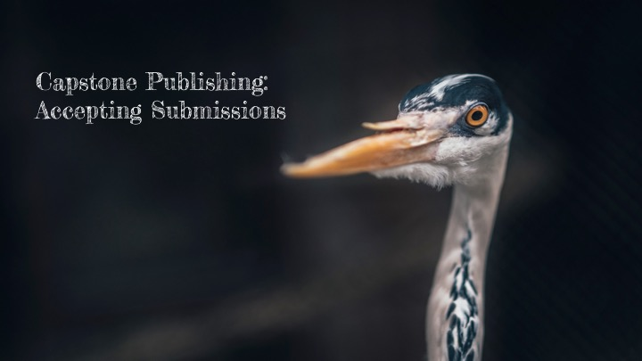 Capstone Publishing: Now Accepting Manuscript Submissions